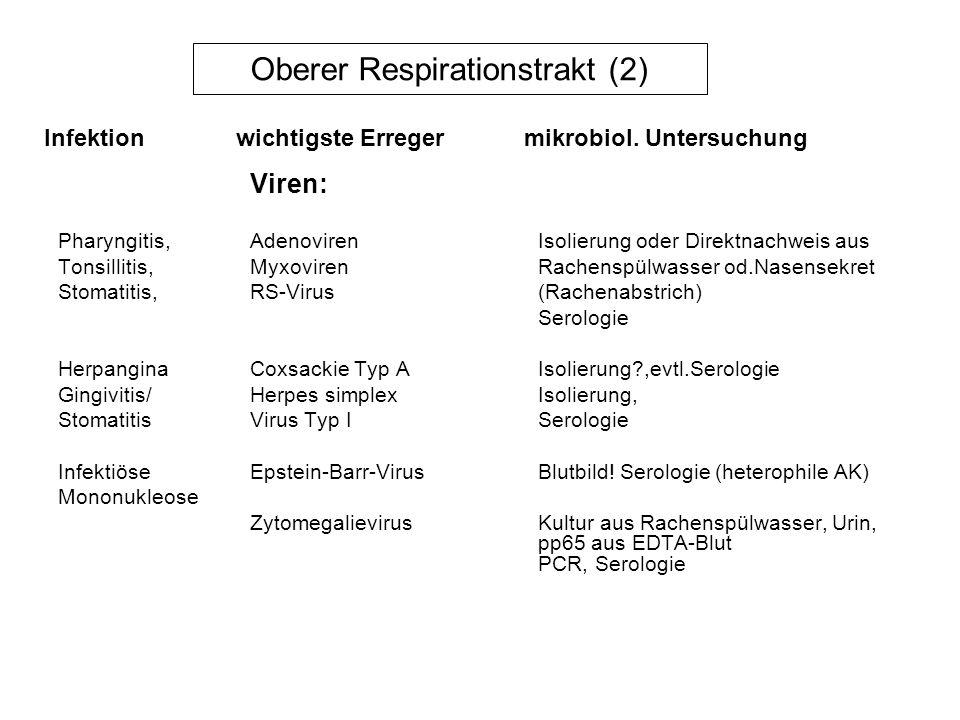 Oberer Respirationstrakt (2) Viren: Pharyngitis, Adenoviren Isolierung oder Direktnachweis aus Tonsillitis, MyxovirenRachenspülwasser od.Nasensekret S