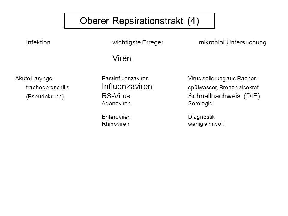 Tiefer Respirationstrakt (1) Akute Bronchitis/RS-VirusVirus-Schnellnachweis, BronchiolitisParainfluenzavirenVirusisolierung aus Rachen- Influenzavirus Typ A, Bspülwasser, Bronchialsekret Serologie Adenovirenevtl.