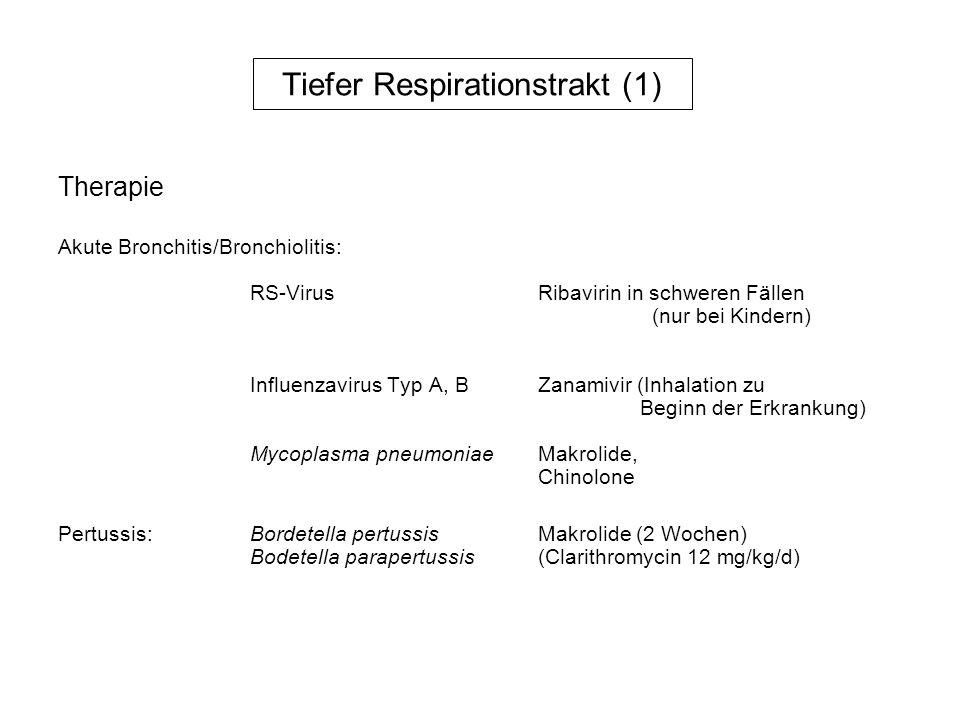 Tiefer Respirationstrakt (2) Pneumonie Viren:ParainfluenzavirenVirusantigennachweis, (15 – 20%)(Kinder)Serologie RS-Virus (Kinder)Virusantigennachweis, Influenzavirus (Typ A, B, C) Virusanzucht, Serologie, Adenoviren Epstein-Barr-VirusSerologie Zytomegalieviruspp65-Antigennachweis, PCR,, Serologie MasernvirusPCR, Serologie EnterovirenVirusanzucht aus Rachen- spülwasser, Bronchialsekret Rhinoviren(evtl.