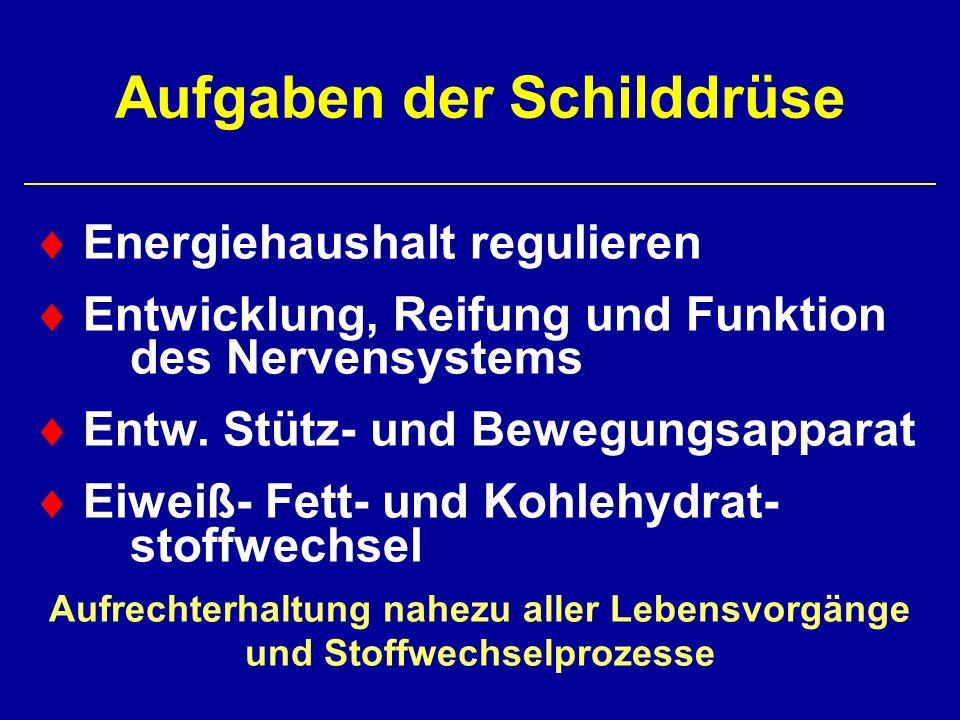 Prävalenz von Struma und Schilddrüsenknoten in deutschlandweiten Erhebungen 1994 und 2002 (Erwachsene) 21 7 33 31 6 9 26 34 0 5 10 15 20 25 30 35 diff.StrumaKnotendiff.