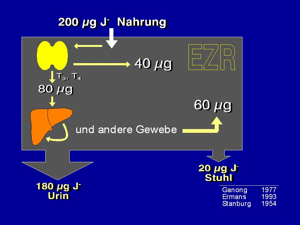 West 72,0 Ost 72,7 Süd 72,3 Nord 71,4 Mitte 72,5 Süd 72,3 Mediane Jodidausscheidung µg Jodid/g Kreatinin] in definierten Regionen Deutschlands Hampel 1994