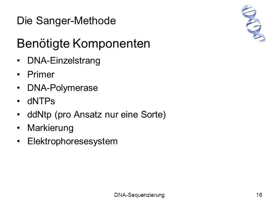 DNA-Sequenzierung16 Die Sanger-Methode Benötigte Komponenten DNA-Einzelstrang Primer DNA-Polymerase dNTPs ddNtp (pro Ansatz nur eine Sorte) Markierung