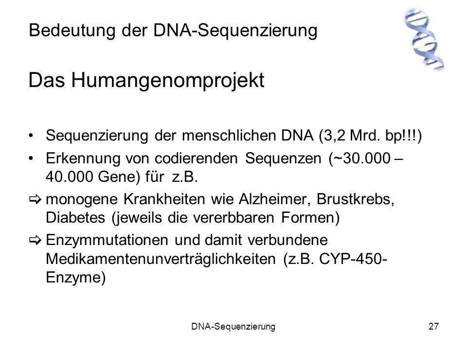 DNA-Sequenzierung27 Bedeutung der DNA-Sequenzierung Das Humangenomprojekt Sequenzierung der menschlichen DNA (3,2 Mrd. bp!!!) Erkennung von codierende