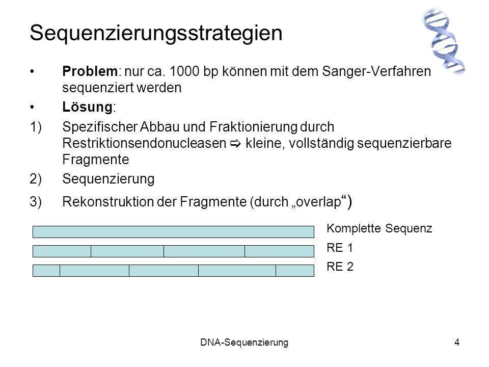 DNA-Sequenzierung4 Sequenzierungsstrategien Problem: nur ca. 1000 bp können mit dem Sanger-Verfahren sequenziert werden Lösung: 1)Spezifischer Abbau u