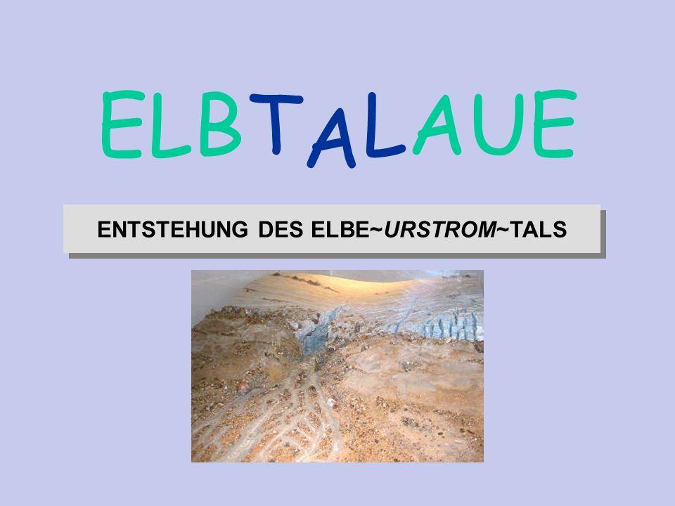 Quelle: G. Miehlich Institut für Bodenkunde Universität Hamburg ENTSTEHUNG DES ELBE~URSTROM~TALS A ELBT LAUE Lotse t e x t ENTSTEHUNG DES ELBE~URSTROM