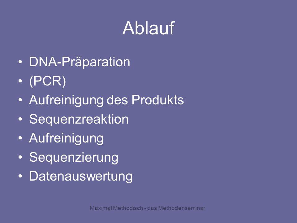 Ablauf DNA-Präparation (PCR) Aufreinigung des Produkts Sequenzreaktion Aufreinigung Sequenzierung Datenauswertung