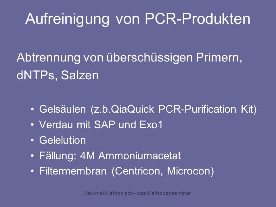 Maximal Methodisch - das Methodenseminar Aufreinigung von PCR-Produkten Abtrennung von überschüssigen Primern, dNTPs, Salzen Gelsäulen (z.b.QiaQuick P