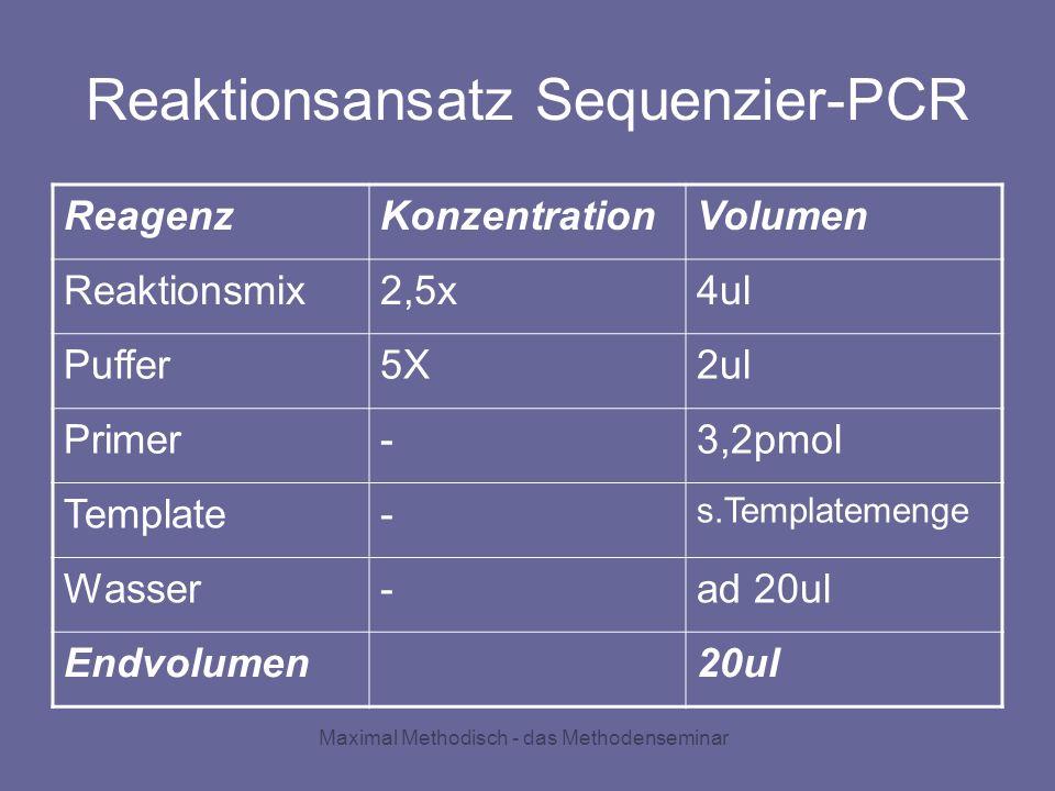 Maximal Methodisch - das Methodenseminar Reaktionsansatz Sequenzier-PCR ReagenzKonzentrationVolumen Reaktionsmix2,5x4ul Puffer5X2ul Primer-3,2pmol Tem