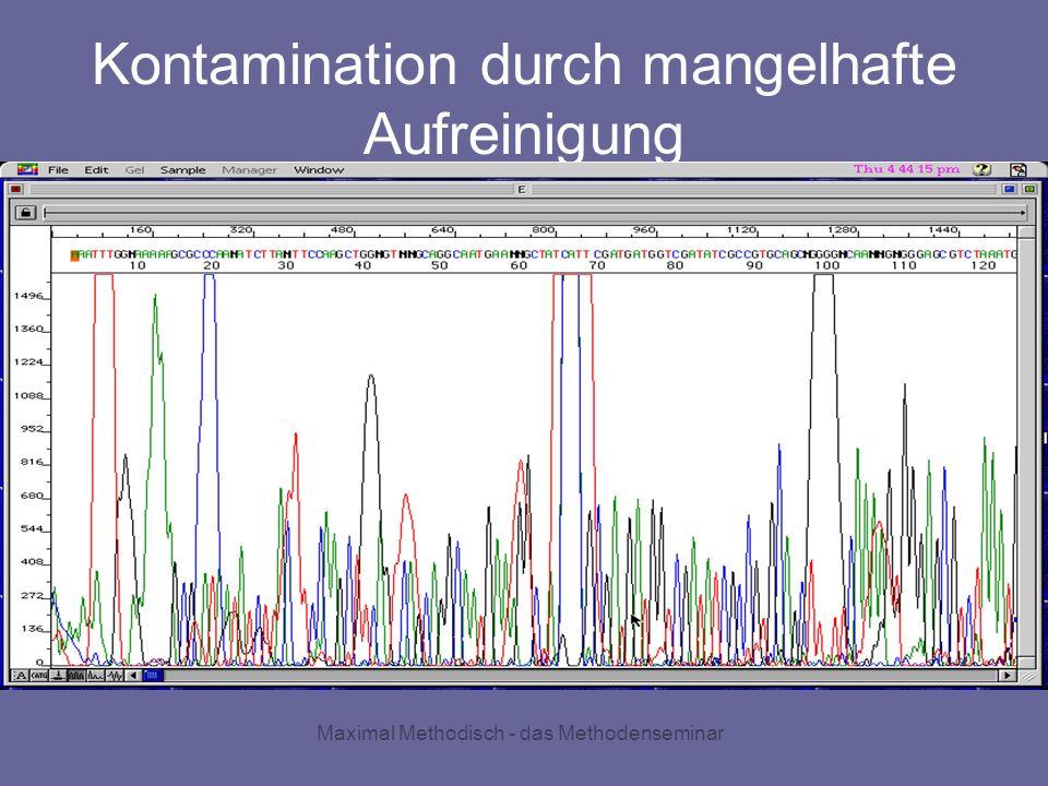 Maximal Methodisch - das Methodenseminar Kontamination durch mangelhafte Aufreinigung