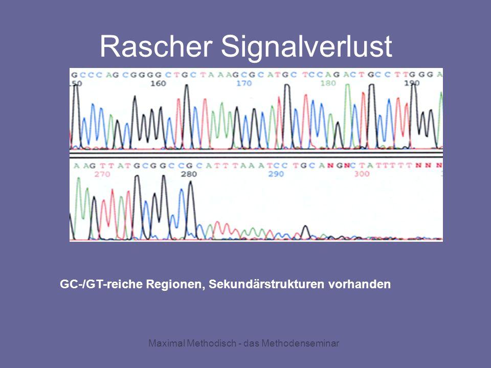 Maximal Methodisch - das Methodenseminar Rascher Signalverlust GC-/GT-reiche Regionen, Sekundärstrukturen vorhanden