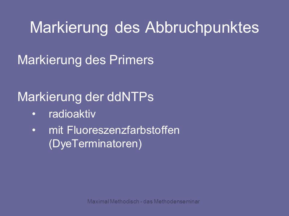 Markierung des Abbruchpunktes Markierung des Primers Markierung der ddNTPs radioaktiv mit Fluoreszenzfarbstoffen (DyeTerminatoren)
