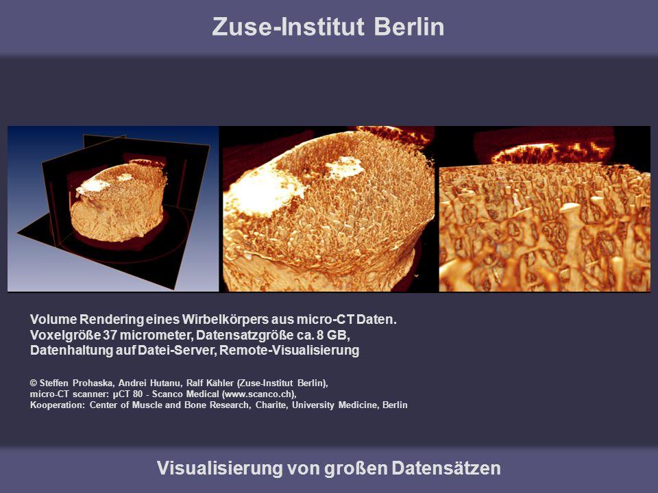 Zuse-Institut Berlin Visualisierung von großen Datensätzen Volume Rendering eines Wirbelkörpers aus micro-CT Daten. Voxelgröße 37 micrometer, Datensat