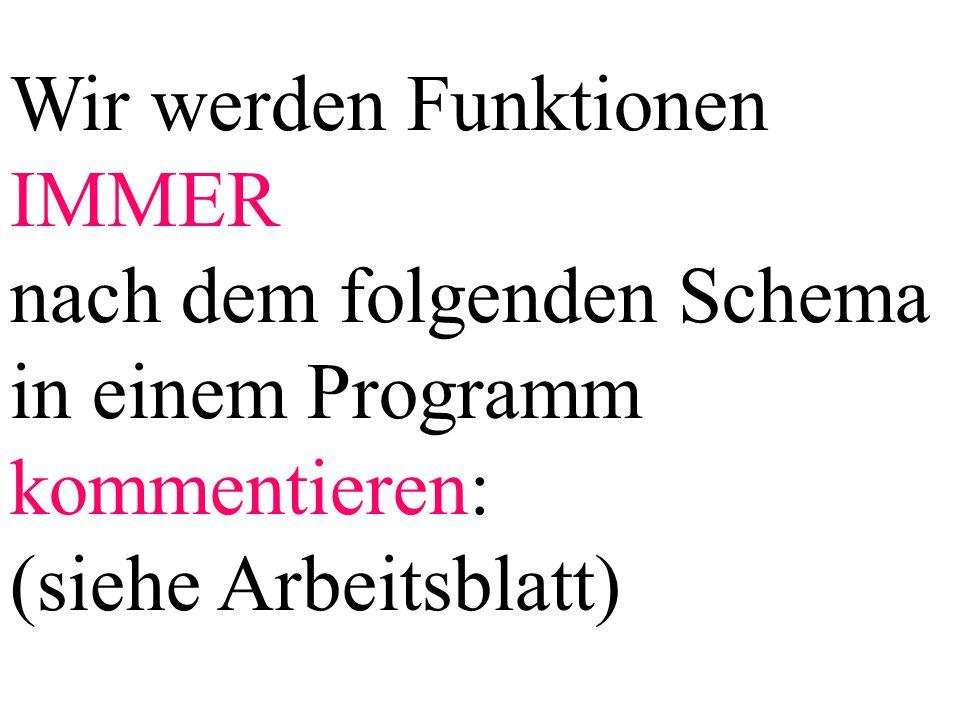 Wir werden Funktionen IMMER nach dem folgenden Schema in einem Programm kommentieren: (siehe Arbeitsblatt)