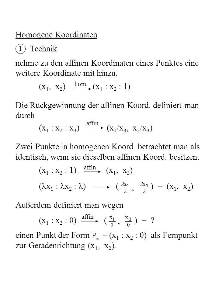 2 Geometrische Deutung Jedem Punkt P = (x 1, x 2 ) der affinen Ebene wird eine Gerade in E³ durch O und P n = (x 1, x 2, 1) zugeordnet.