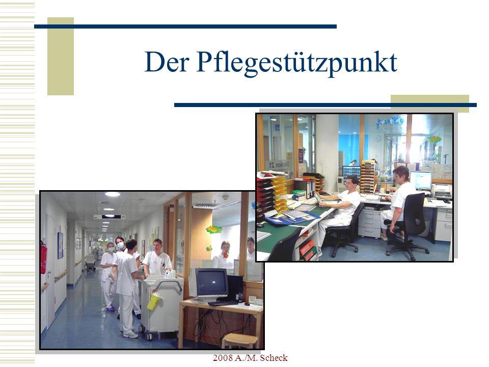 2008 A./M.Scheck Was haben wir seit Beginn des Projekt erreicht.