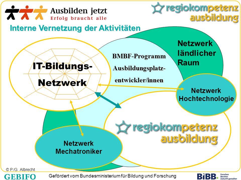 Gefördert vom Bundesministerium für Bildung und Forschung BMBF-ProgrammAusbildungsplatz-entwickler/innen Interne Vernetzung der Aktivitäten Netzwerk M