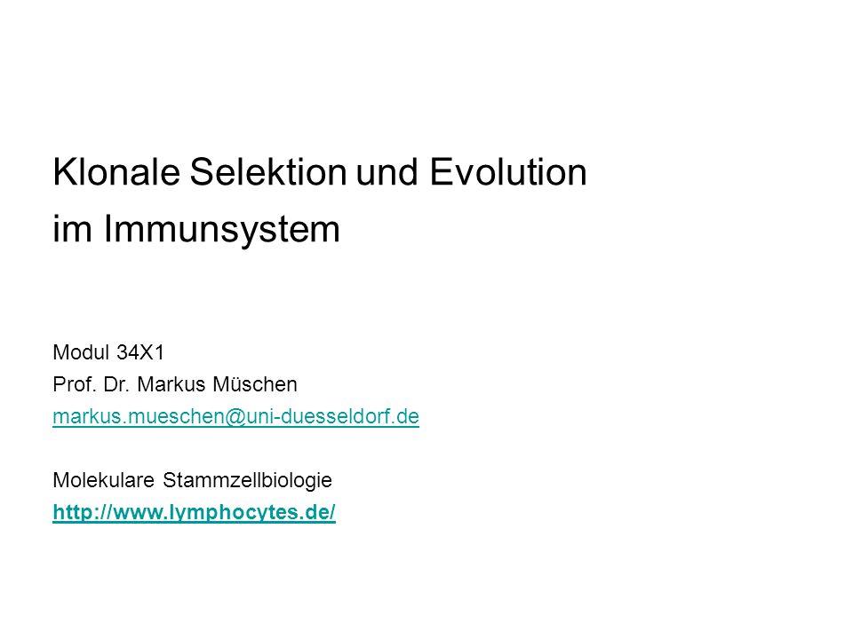 Klonale Selektion und Evolution im Immunsystem Modul 34X1 Prof. Dr. Markus Müschen markus.mueschen@uni-duesseldorf.de Molekulare Stammzellbiologie htt