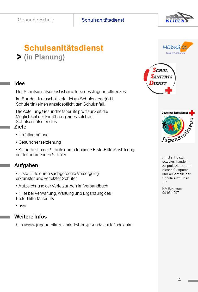 tz4 Schulsanitätsdienst Gesunde Schule Titelseite 1 Idee Schulsanitätsdienst (in Planung) > Der Schulsanitätsdienst ist eine Idee des Jugendrotkreuzes