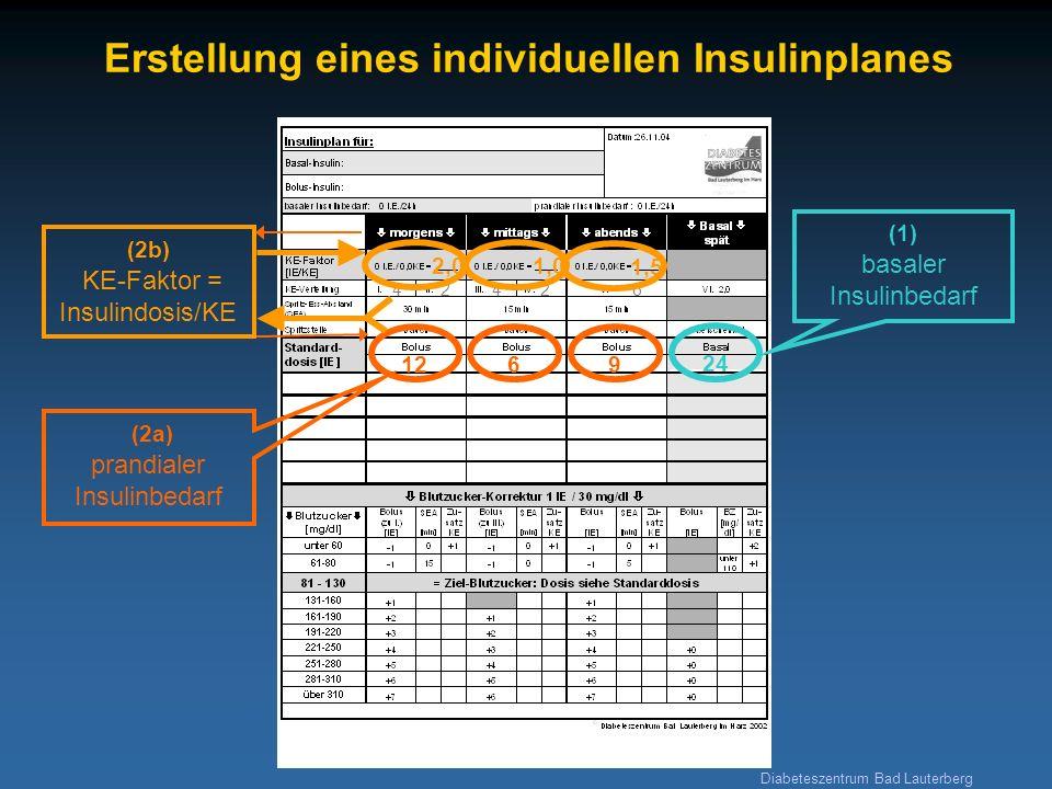 Diabeteszentrum Bad Lauterberg Erstellung eines individuellen Insulinplanes 24 (1) basaler Insulinbedarf 1269 (2a) prandialer Insulinbedarf 42426 2,0