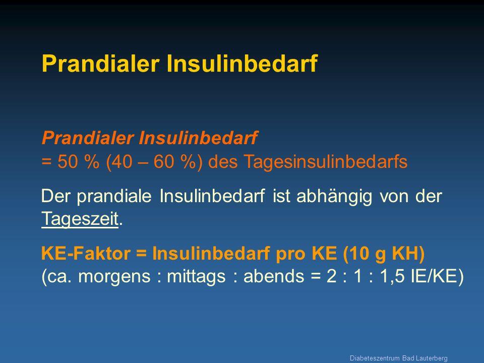 Diabeteszentrum Bad Lauterberg Prandialer Insulinbedarf Prandialer Insulinbedarf = 50 % (40 – 60 %) des Tagesinsulinbedarfs Der prandiale Insulinbedar