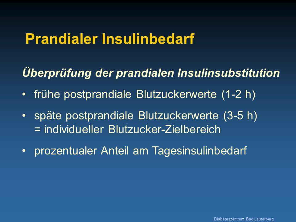 Diabeteszentrum Bad Lauterberg Prandialer Insulinbedarf Überprüfung der prandialen Insulinsubstitution frühe postprandiale Blutzuckerwerte (1-2 h) spä