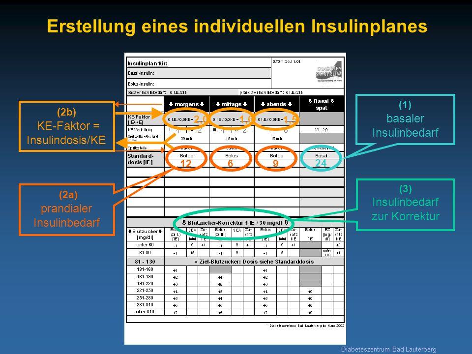 Diabeteszentrum Bad Lauterberg Erstellung eines individuellen Insulinplanes 24 (1) basaler Insulinbedarf (3) Insulinbedarf zur Korrektur 1269 (2a) pra