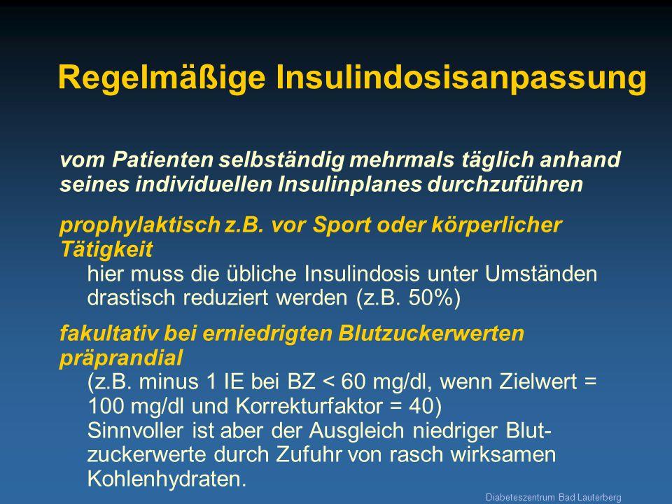 Diabeteszentrum Bad Lauterberg Regelmäßige Insulindosisanpassung vom Patienten selbständig mehrmals täglich anhand seines individuellen Insulinplanes