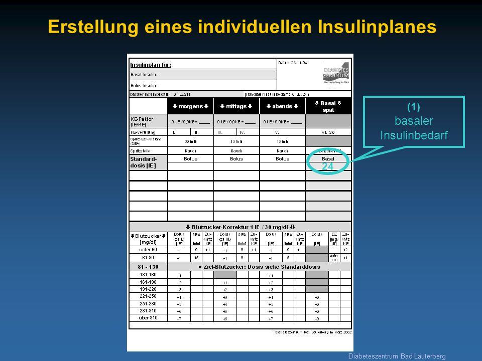 Diabeteszentrum Bad Lauterberg Erstellung eines individuellen Insulinplanes 24 (1) basaler Insulinbedarf (3) Insulinbedarf zur Korrektur 1269 (2a) prandialer Insulinbedarf 42426 (4b) Blutzucker- Zielbereich (nüchtern) (4a) Blutzucker- Zielwert (z.B.