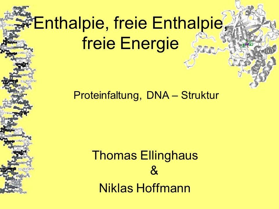 Enthalpie, freie Enthalpie, freie Energie Thomas Ellinghaus & Niklas Hoffmann Proteinfaltung, DNA – Struktur