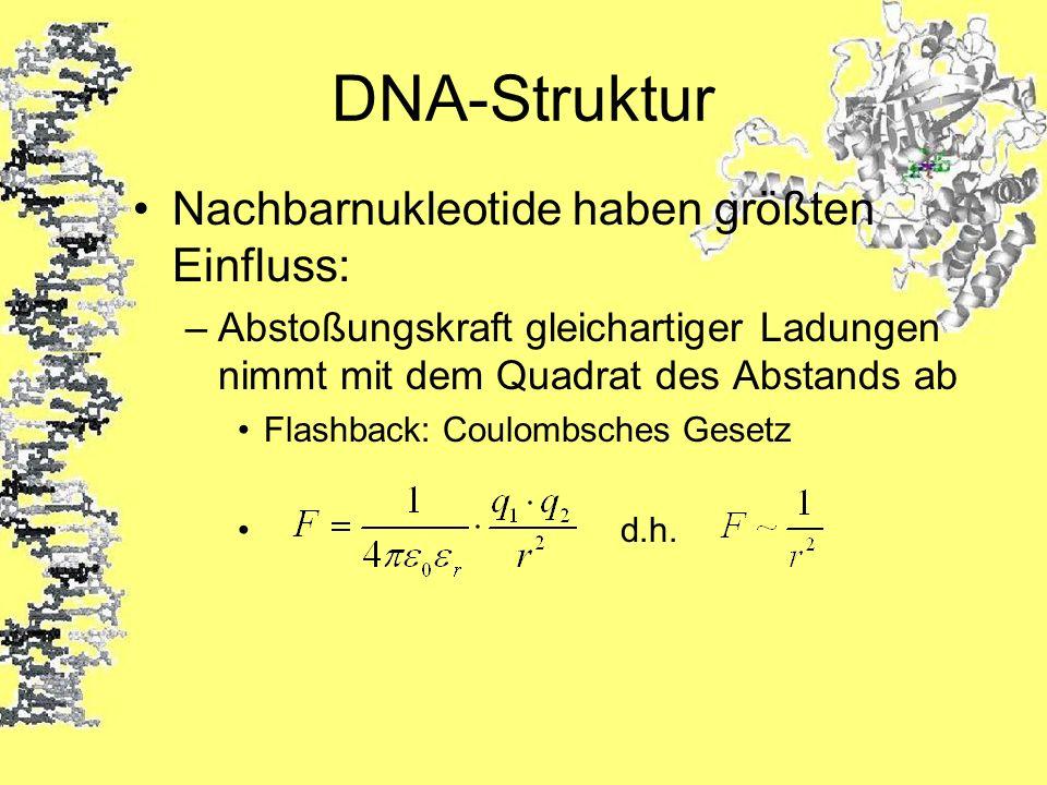 DNA-Struktur Nachbarnukleotide haben größten Einfluss: –Abstoßungskraft gleichartiger Ladungen nimmt mit dem Quadrat des Abstands ab Flashback: Coulom