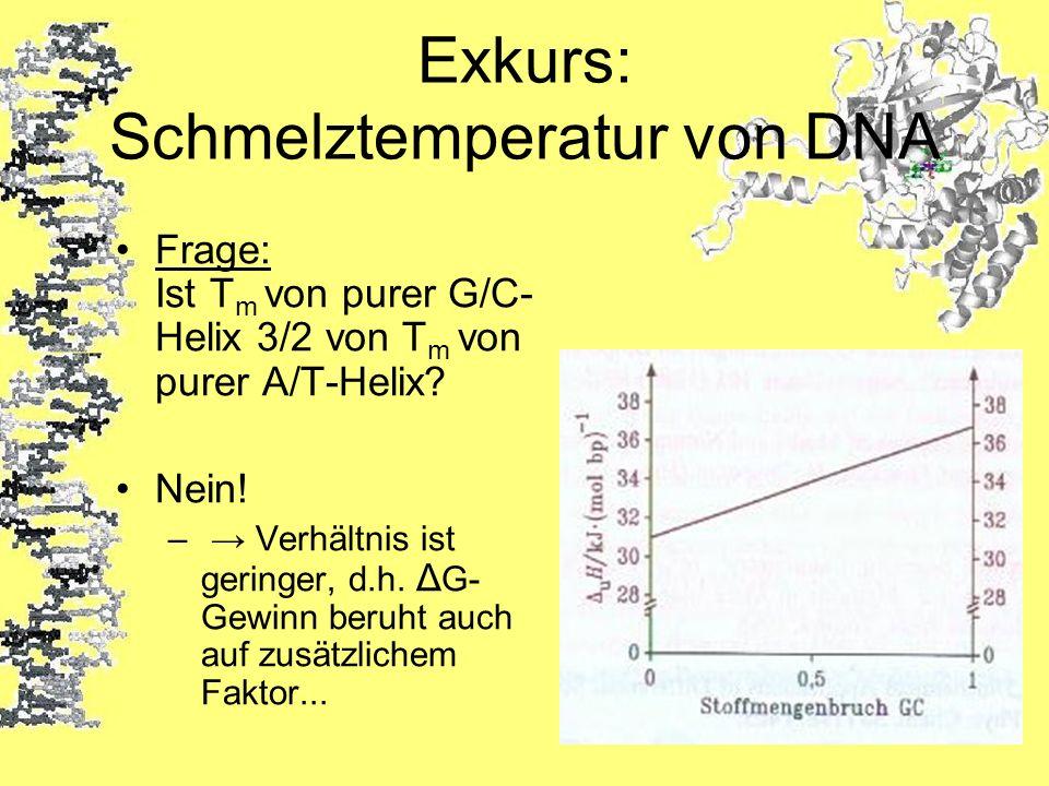Exkurs: Schmelztemperatur von DNA Frage: Ist T m von purer G/C- Helix 3/2 von T m von purer A/T-Helix? Nein! – Verhältnis ist geringer, d.h. Δ G- Gewi