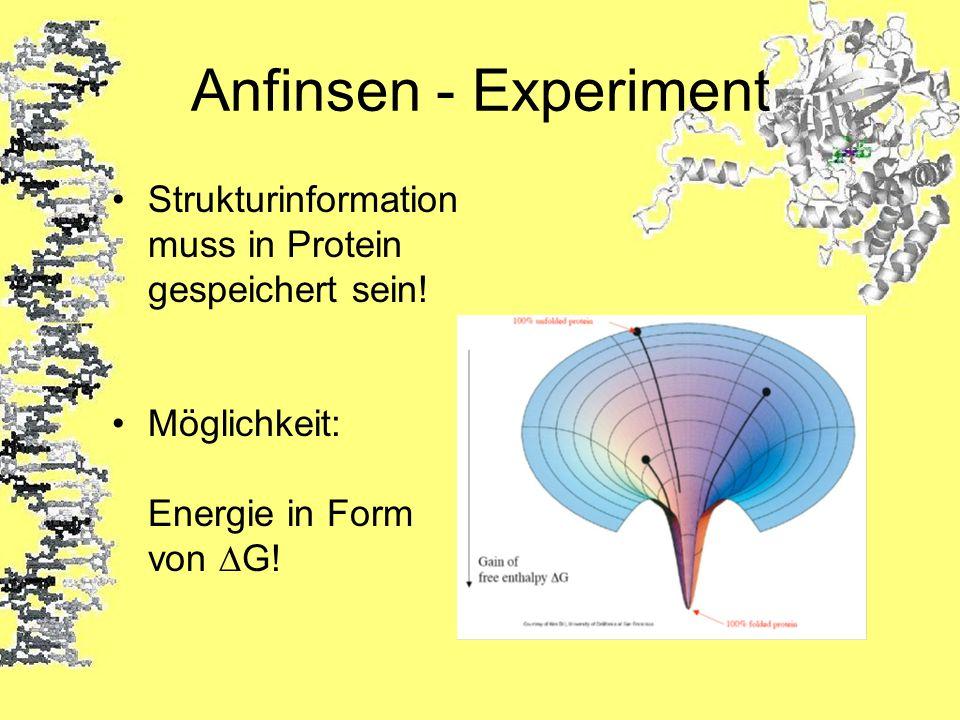 Anfinsen - Experiment Strukturinformation muss in Protein gespeichert sein! Möglichkeit: Energie in Form von G!