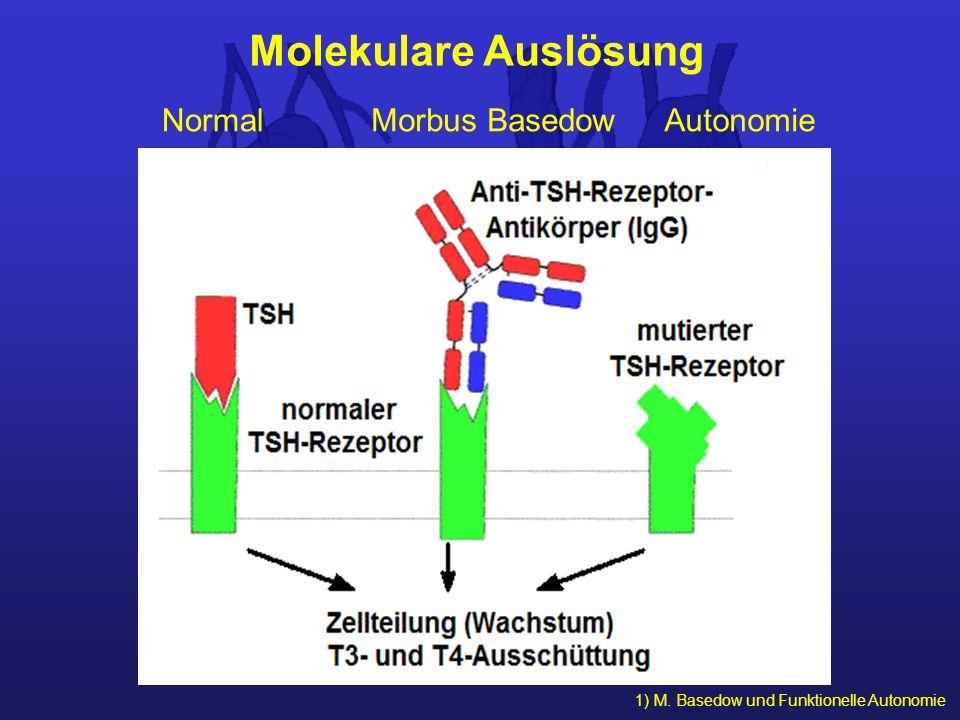 1) M. Basedow und Funktionelle Autonomie Molekulare Auslösung NormalMorbus BasedowAutonomie