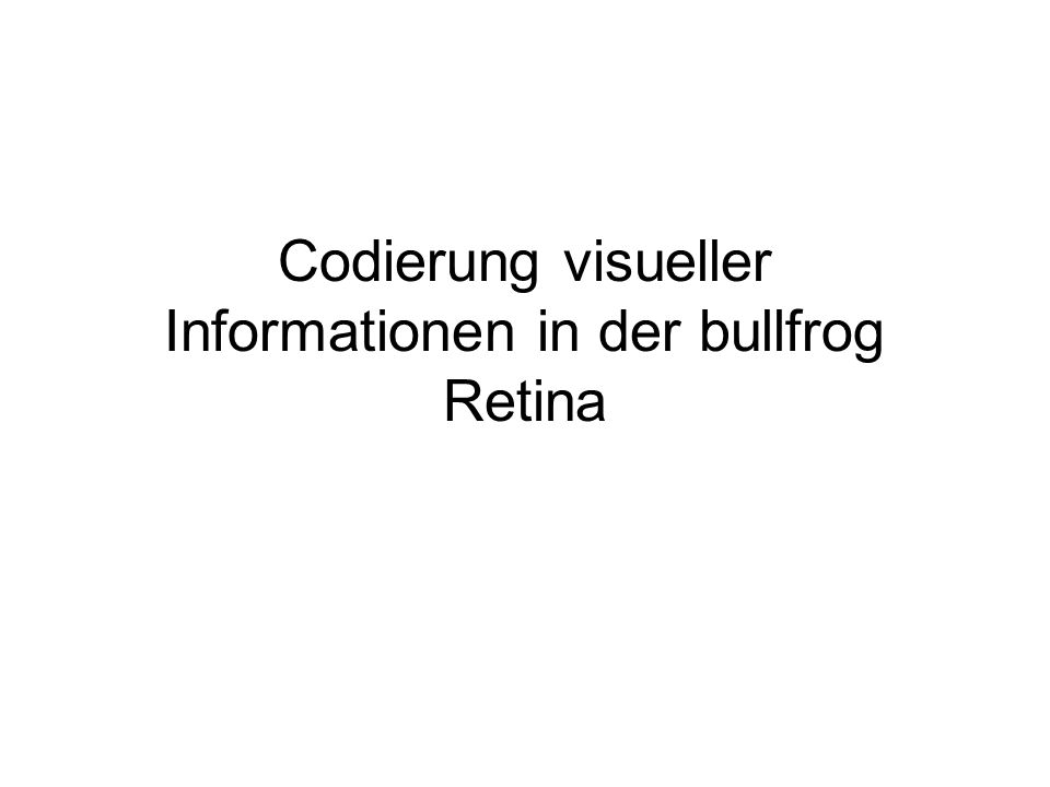 Codierung visueller Informationen in der bullfrog Retina