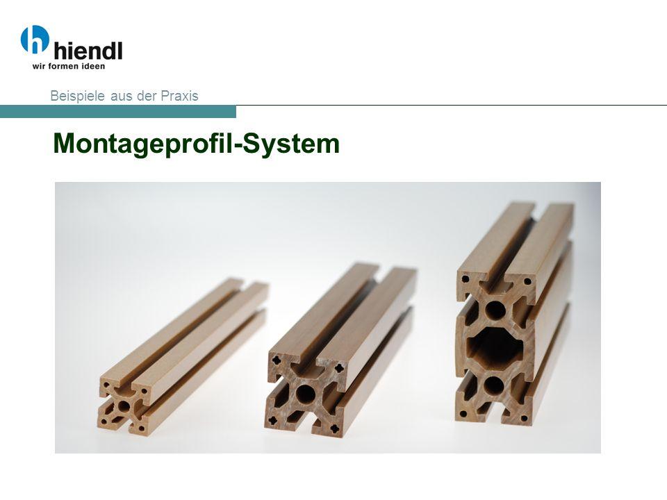 Montageprofil-System Beispiele aus der Praxis