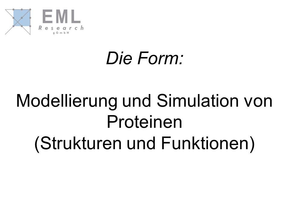 Die Form: Modellierung und Simulation von Proteinen (Strukturen und Funktionen)