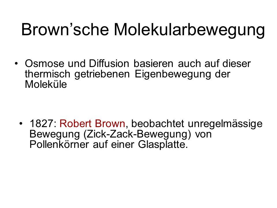 Brownsche Molekularbewegung 1827: Robert Brown, beobachtet unregelmässige Bewegung (Zick-Zack-Bewegung) von Pollenkörner auf einer Glasplatte.