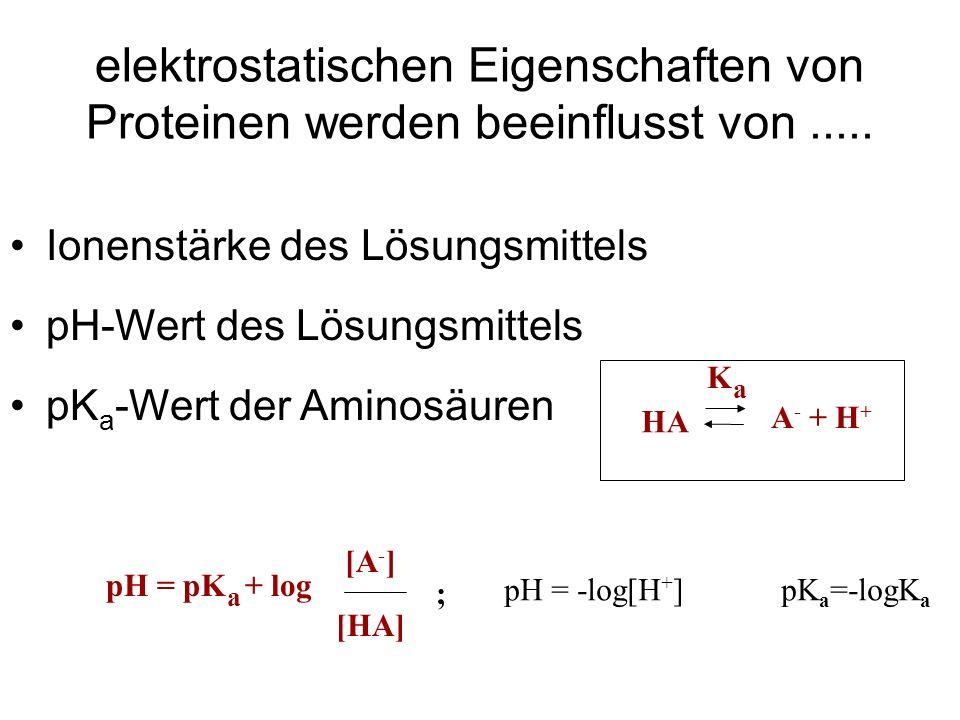 elektrostatischen Eigenschaften von Proteinen werden beeinflusst von.....