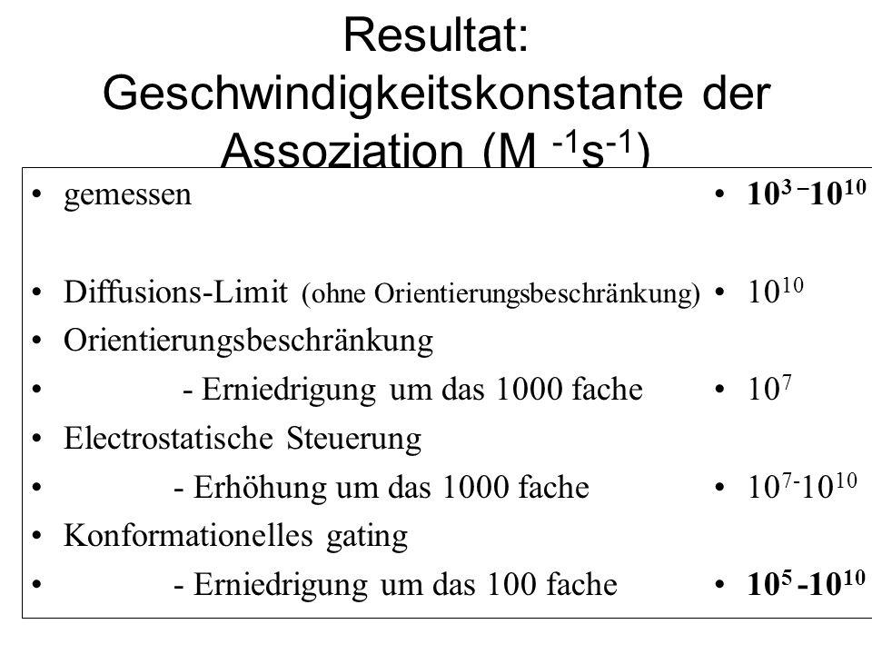 Resultat: Geschwindigkeitskonstante der Assoziation (M -1 s -1 ) gemessen Diffusions-Limit (ohne Orientierungsbeschränkung) Orientierungsbeschränkung - Erniedrigung um das 1000 fache Electrostatische Steuerung - Erhöhung um das 1000 fache Konformationelles gating - Erniedrigung um das 100 fache 10 3 – 10 10 10 10 7 10 7- 10 10 10 5 -10 10