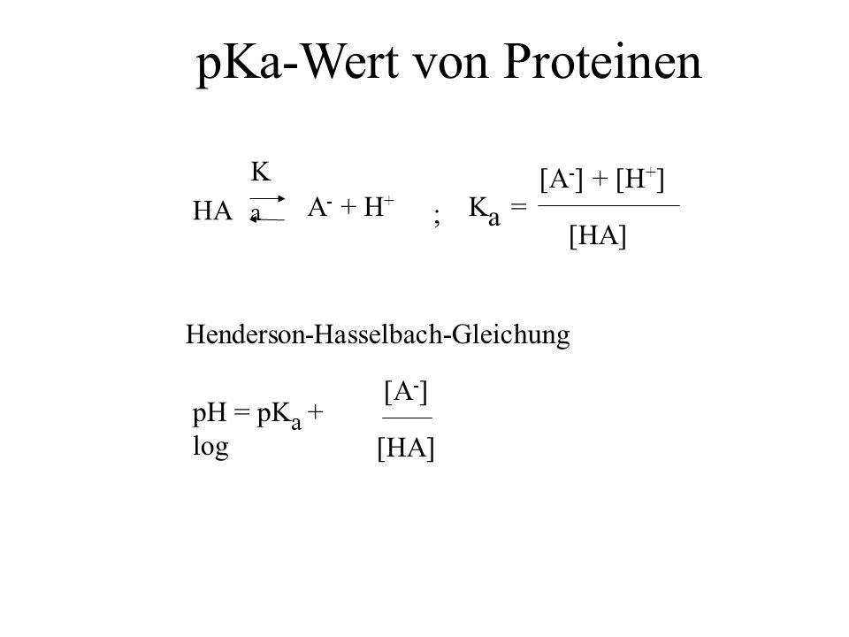 HA A - + H + KaKa = KaKa [HA] [A - ] + [H + ] ; pH = pK a + log [HA] [A - ] Henderson-Hasselbach-Gleichung pKa-Wert von Proteinen