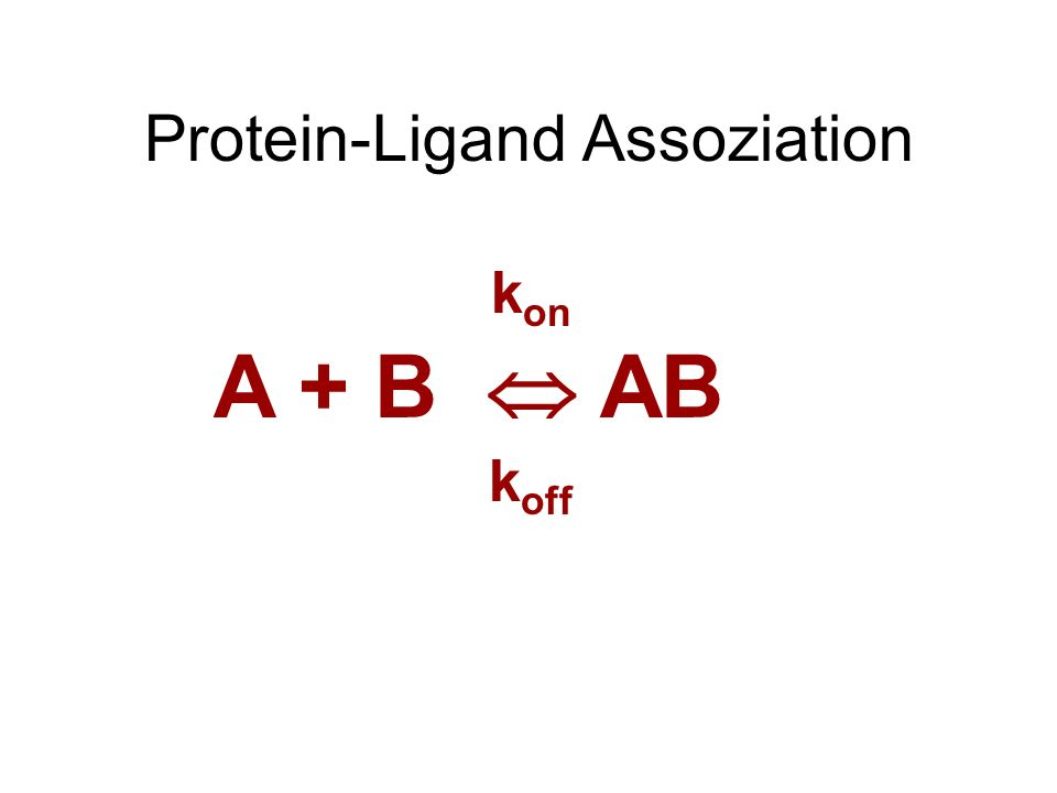 Protein-Ligand Assoziation A + B AB k on k off