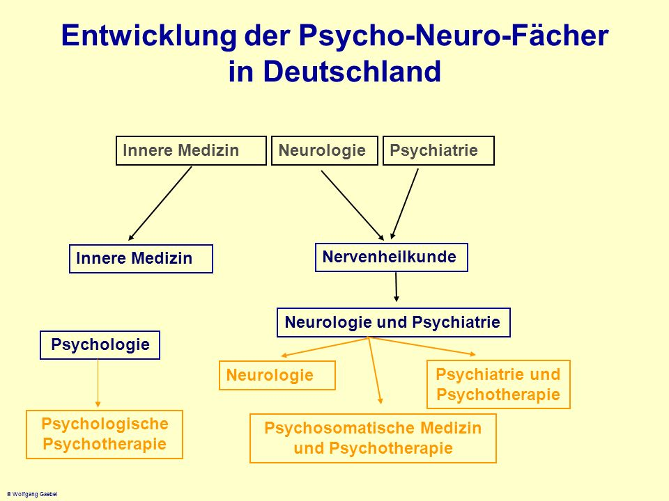 © Wolfgang Gaebel Entwicklung der Psycho-Neuro-Fächer in Deutschland Innere MedizinNeurologie Psychiatrie Innere Medizin Nervenheilkunde Neurologie un