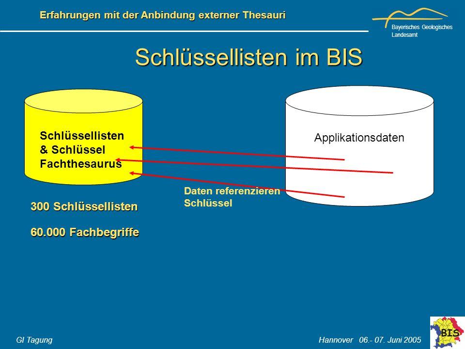 Bayerisches Geologisches Landesamt GI Tagung Hannover 06.- 07. Juni 2005 Erfahrungen mit der Anbindung externer Thesauri Schlüssellisten im BIS Applik