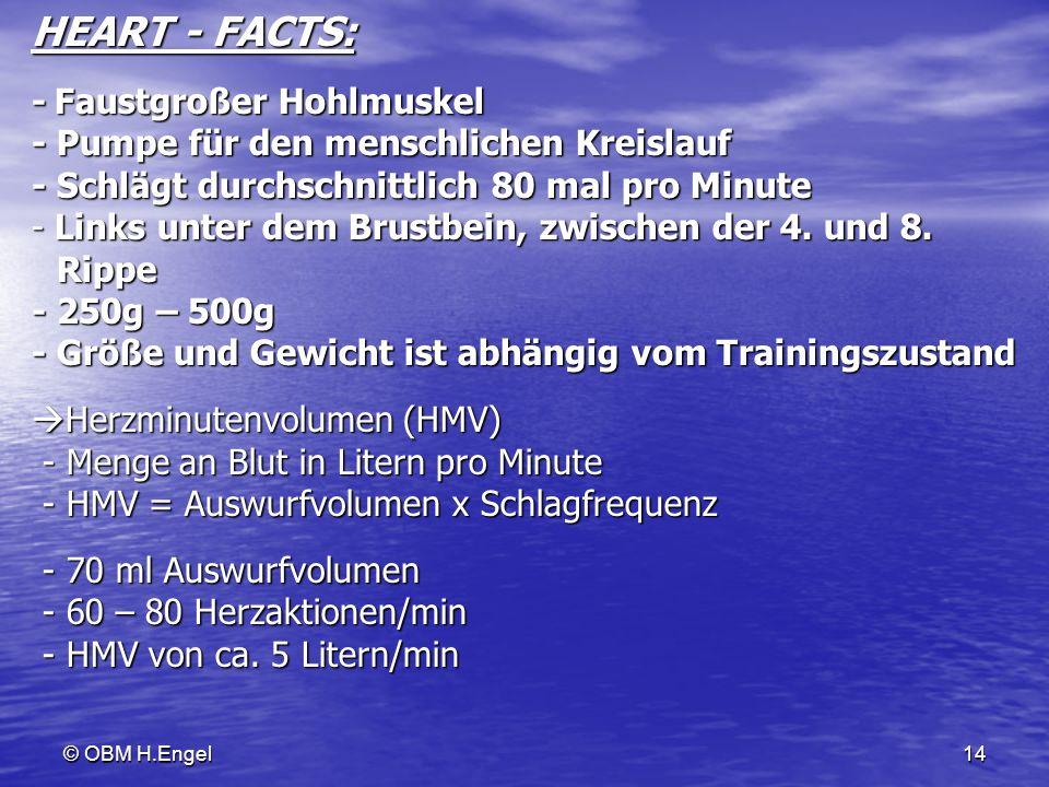 © OBM H.Engel14 HEART - FACTS: - Faustgroßer Hohlmuskel - Pumpe für den menschlichen Kreislauf - Schlägt durchschnittlich 80 mal pro Minute - Links un