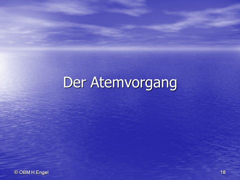 © OBM H.Engel18 Der Atemvorgang