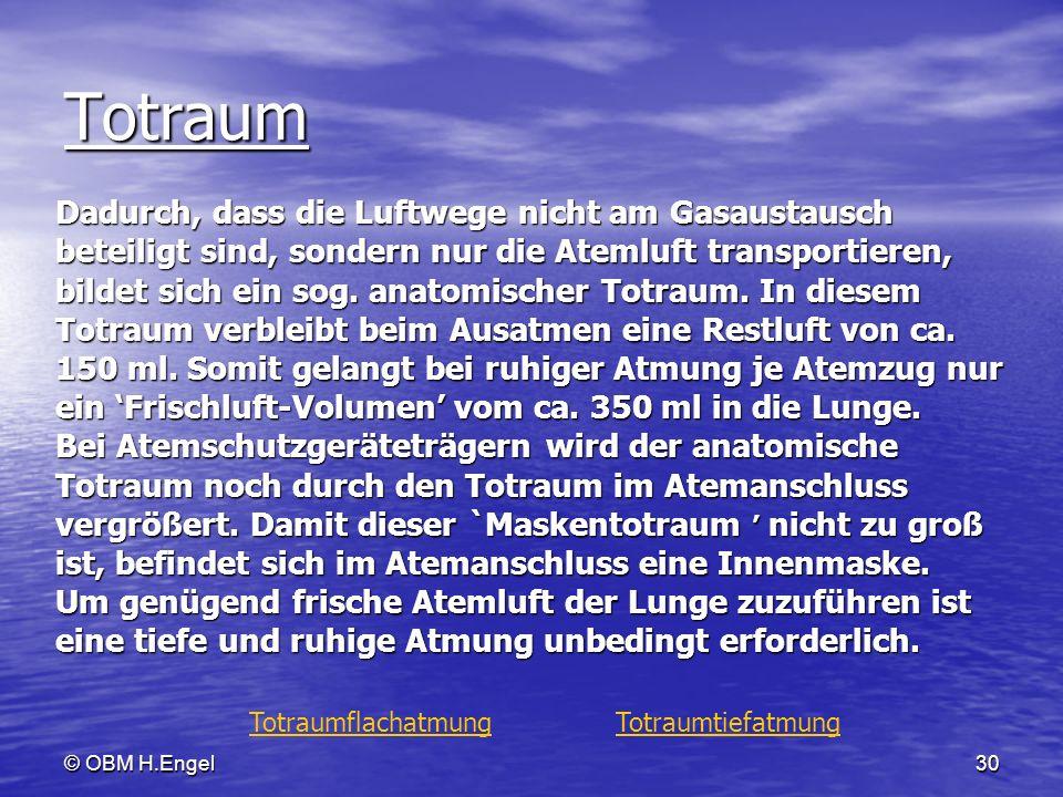 © OBM H.Engel30 Totraum Dadurch, dass die Luftwege nicht am Gasaustausch beteiligt sind, sondern nur die Atemluft transportieren, bildet sich ein sog.