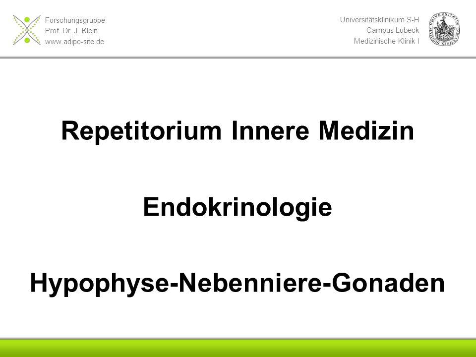 Forschungsgruppe Prof. Dr. J. Klein www.adipo-site.de Universitätsklinikum S-H Campus Lübeck Medizinische Klinik I Repetitorium Innere Medizin Endokri