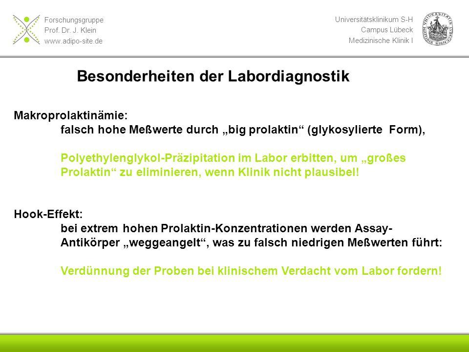 Forschungsgruppe Prof. Dr. J. Klein www.adipo-site.de Universitätsklinikum S-H Campus Lübeck Medizinische Klinik I Besonderheiten der Labordiagnostik