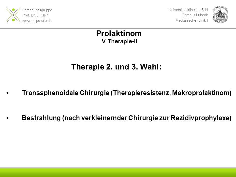Forschungsgruppe Prof. Dr. J. Klein www.adipo-site.de Universitätsklinikum S-H Campus Lübeck Medizinische Klinik I Therapie 2. und 3. Wahl: Transsphen