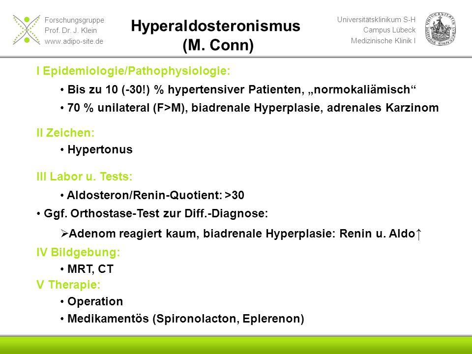Forschungsgruppe Prof. Dr. J. Klein www.adipo-site.de Universitätsklinikum S-H Campus Lübeck Medizinische Klinik I Hyperaldosteronismus (M. Conn) I Ep